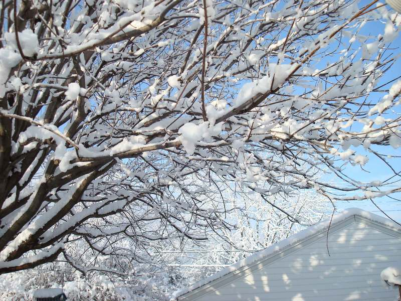 Snowongarage